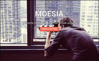 WordPressテンプレート 無料テンプレート MOESIA